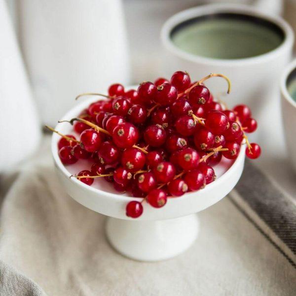 Красная смородина - вкусно и полезно